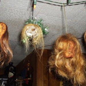 4 of my favorites-shrunken apple heads