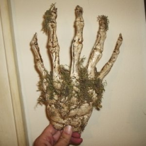 hot glue moss hand- for decoration in grubyard