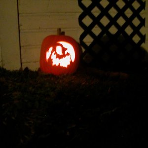 Pumpkin from 2008