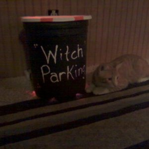 Witch Parking Broom Stand  and Pumpkin   Steady Orange lights and Blinking Purple lights inside