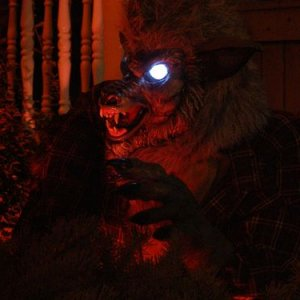 Werewolf was static this year but still scary