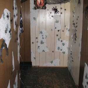 critter hallway with bugs on walls, spiders hanging, fishing lline hanging and critter crunch on floor