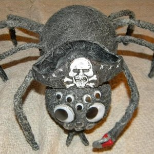 Pirate Spider pretty much finished